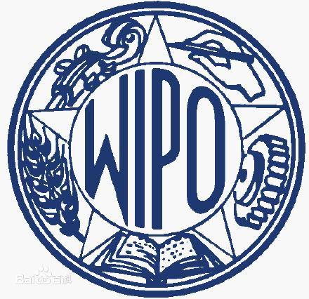 国际/PCT专利